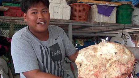 Рыбак нашёл на пляже рвоту кашалота на 9,7 млн тенге