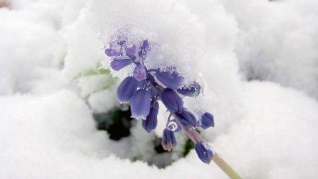 До минус 30 похолодает в Казахстане