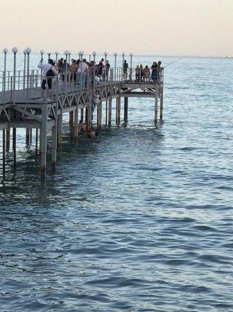Когда Службы спасения и акимат оборудуют берег спасательными средствами?