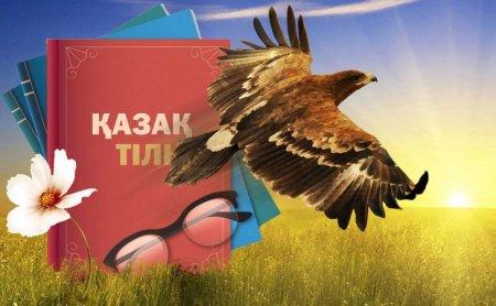 «Не баклажан, а жертатақ»: об искоренении заимствований в казахском языке высказался блогер